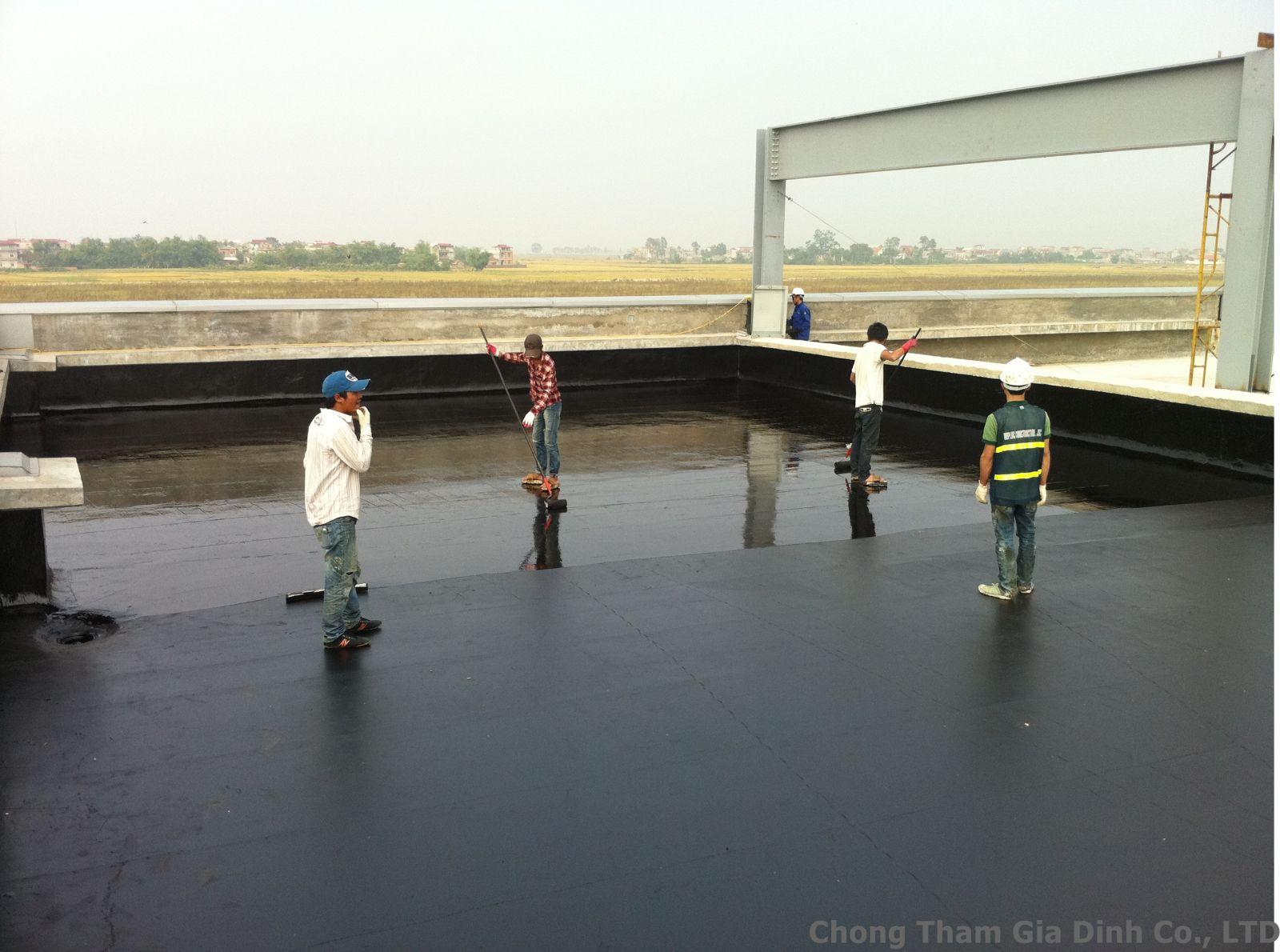 Chuyên sửa chữa chống thấm quận 2 - Chống thấm màng khò - Chống dột mái tôn - Thấm tường nhà Tại Hcm