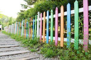Mẫu tường rào bằng gỗ trồng cây xanh xung quanh